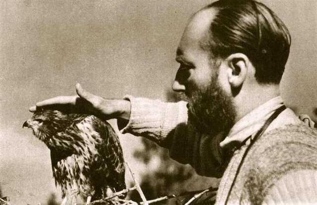 Fotografia  Włodzimierza Puchalskiego w 100-lecie urodzin - full image