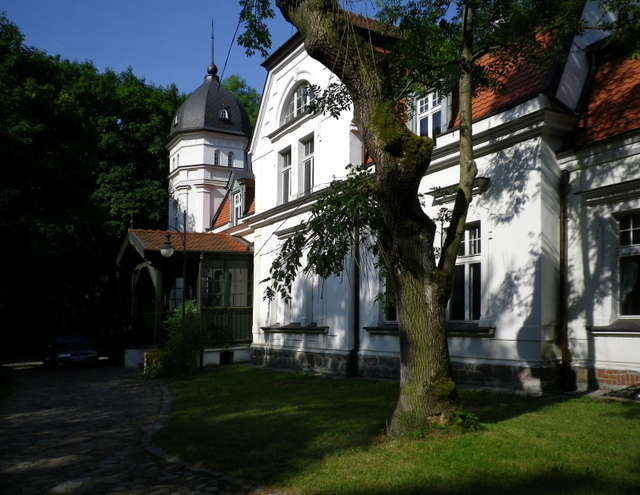Historia Muzeum Przyrody - full image