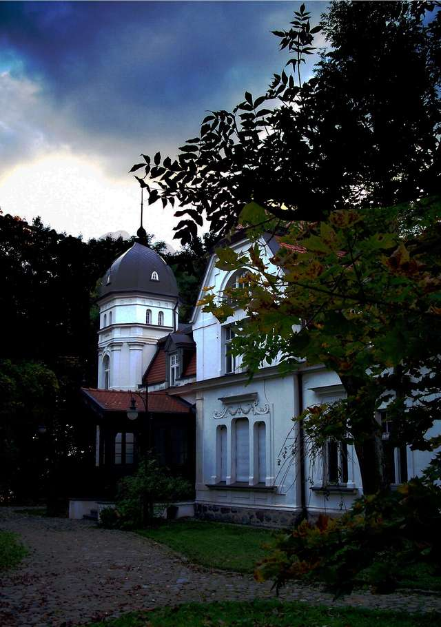 Film promujący Muzeum Przyrody w Olsztynie - full image