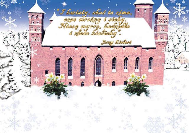 Spokojnych i radosnych Świąt Bożego Narodzenia - full image