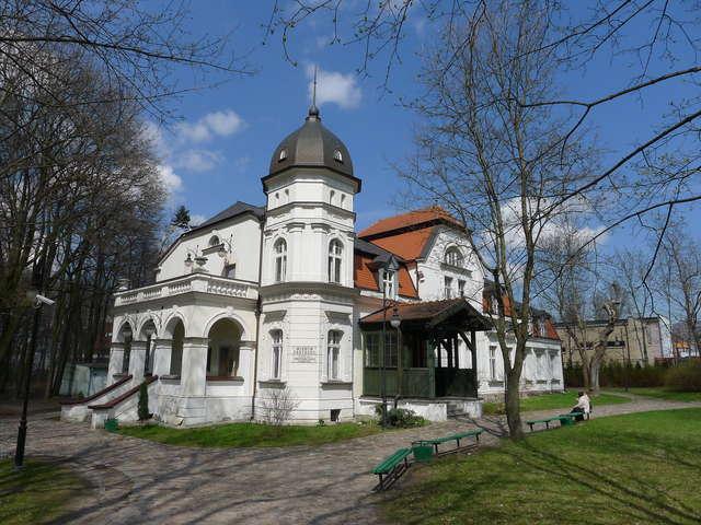 W Muzeum Przyrody w Olsztynie odbyło się otwarcie wystawy Żurawie nie znają granic. - full image