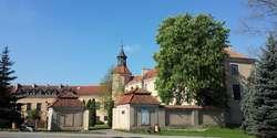 Pałac Dohnów 1945–1989. Powstawanie z ruin - wystawa czasowa.