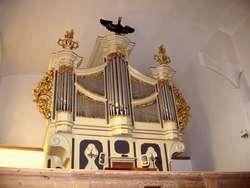 Andrzej Rzempołuch, kierownik Działu Sztuki Dawnej MWM, konsultował prace przy prospekcie organowym w gotyckim kościele św. Piotra Apostoła w Młynarach.