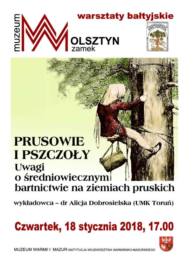 Warsztaty Bałtyjskie, dr Alicja Dobrosielska (UMK Toruń) - full image