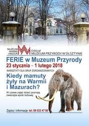 Ferie w Muzeum - Muzeum Przyrody w Olsztynie