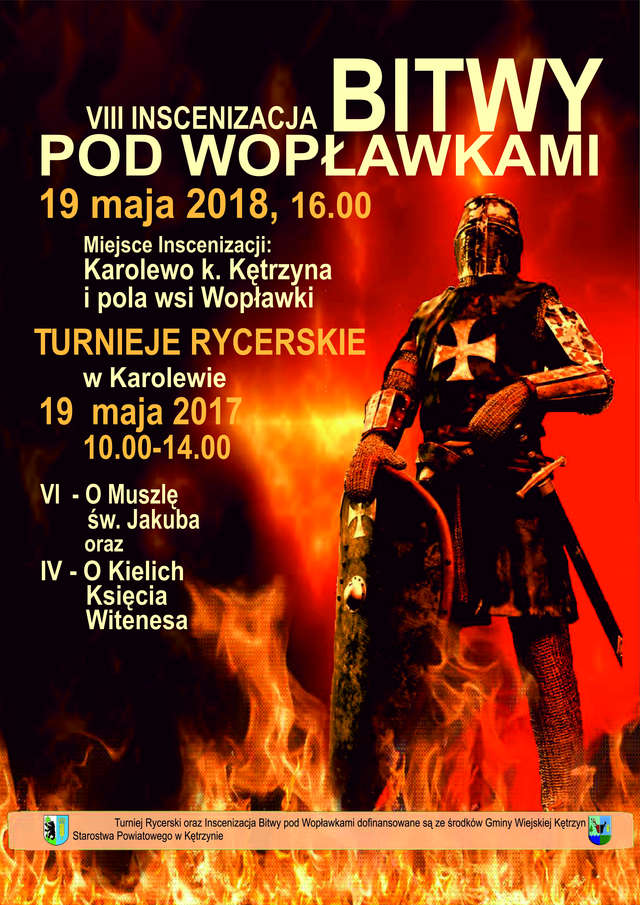 VIII Inscenizacji Bitwy pod Wopławkami - full image