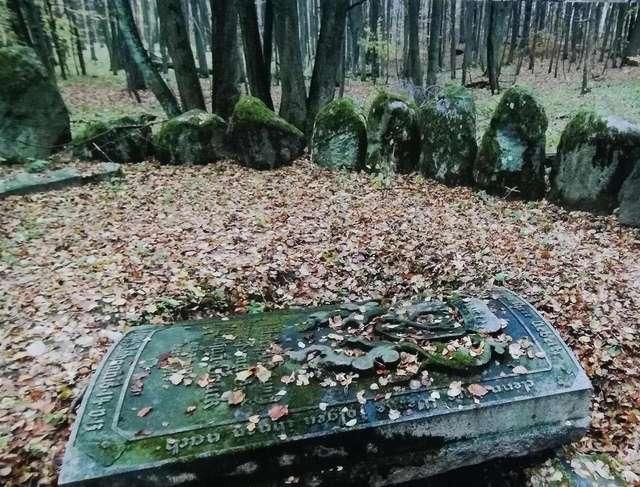 Cmentarz w Markowie. Fot. J. Sztorc - full image