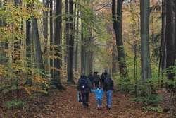Spacer krajobrazowy w Olsztynie