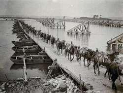 Wielka Wojna na Wschodzie (1914-1918). Od Bałtyku po Karpaty