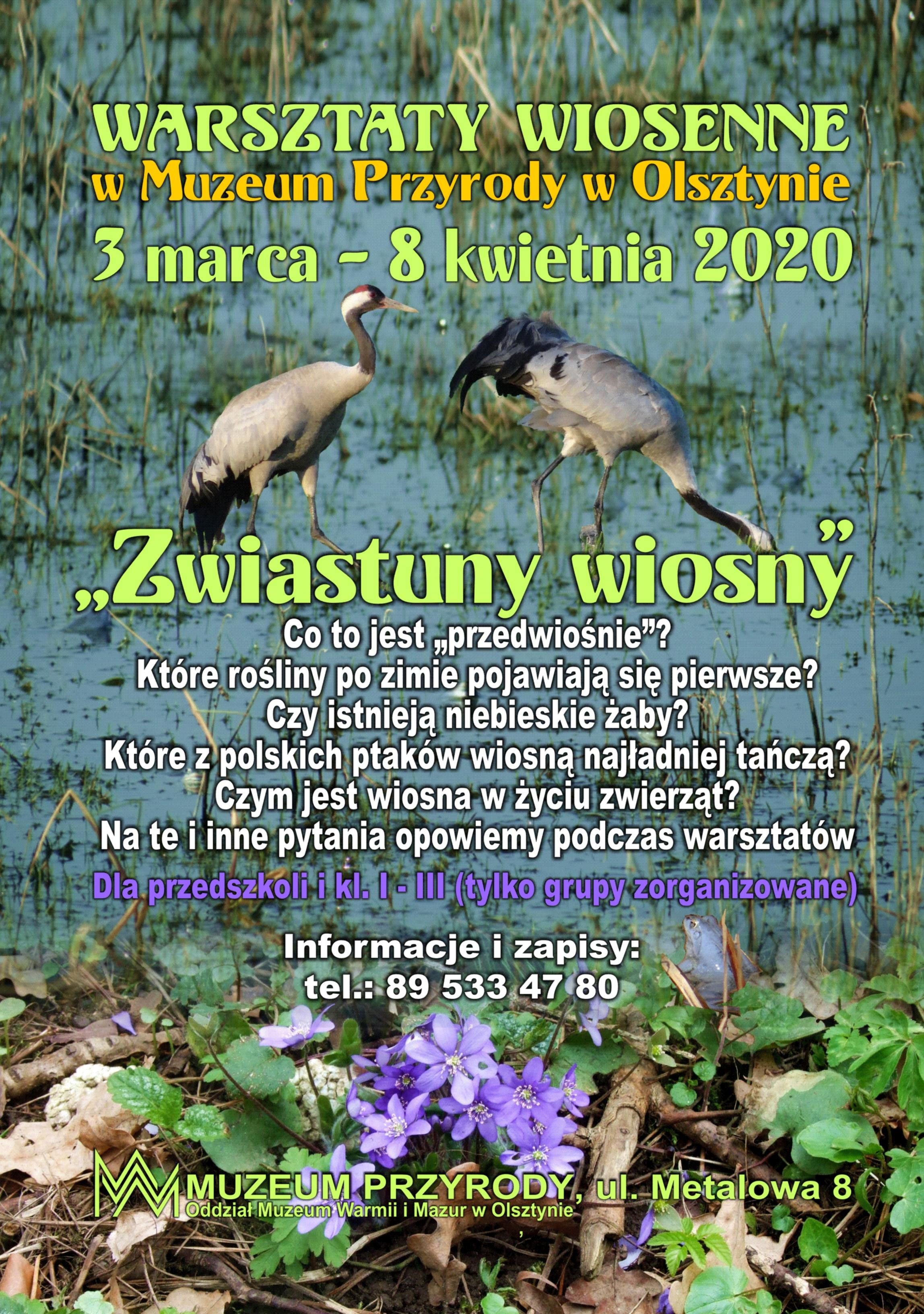 https://m.wmwm.pl/2020/02/orig/przyroda-warsztaty-6612.jpg
