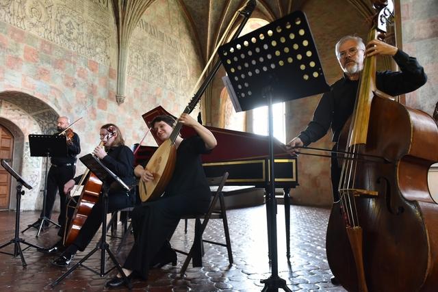 """Koncert """"Muzyka pałaców i salonów""""  - full image"""